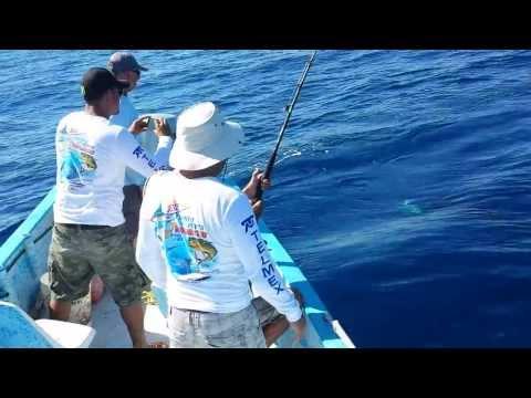 Great Sport Fishing Sailfish caught in Bay Of Dreams, La Paz Baja California Sur.