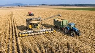 NEW HOLLAND CR10.90 SmartTrax - World Biggest Combine | BIG Corn Harvest 2018