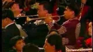 Viva Mexico mariachi