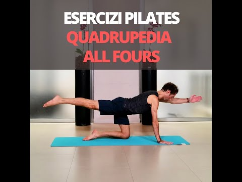 Esercizi Pilates: Quadrupedia o All fours - Tutorial Pilates thumbnail