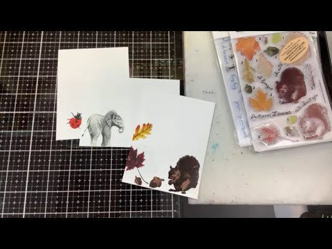 Kitchen Sink Stamps Ladybug, Lil Elephant And Autumn Squirrel