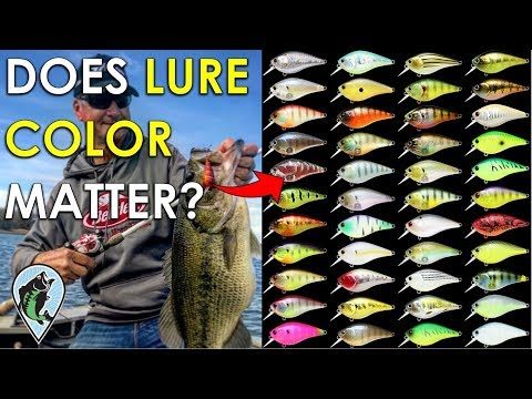 When Does Lure Color Matter In Bass Fishing? | Bait Color Selection