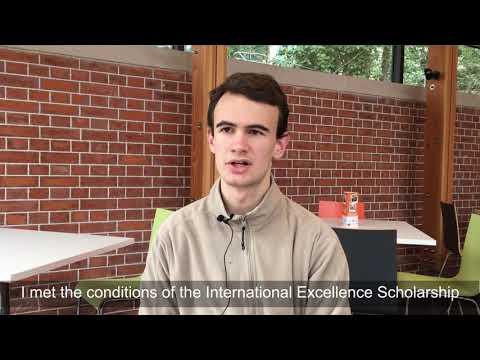 International Excellence scholarship