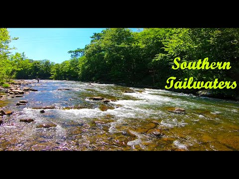 SOUTHERN TAILWATERS - N. Branch Potomac & Savage River (Summer Trout)