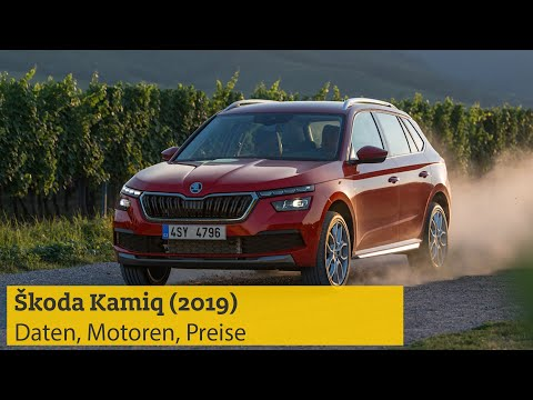 Škoda Kamiq (2019) – Daten, Motoren, Preise | ADAC