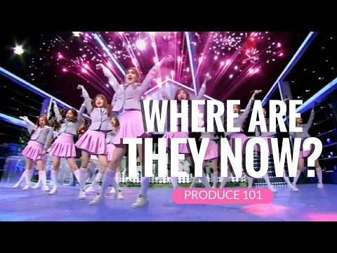 PRODUCE 101: where are they now? [PART 6]