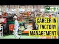 Career In Factory and product management