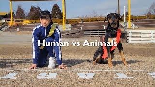 ご注意≫―――――――――――――――― 本映像には、動物の視野を再現するための特殊な手法による映像が含まれます。 そのため、ご鑑賞...
