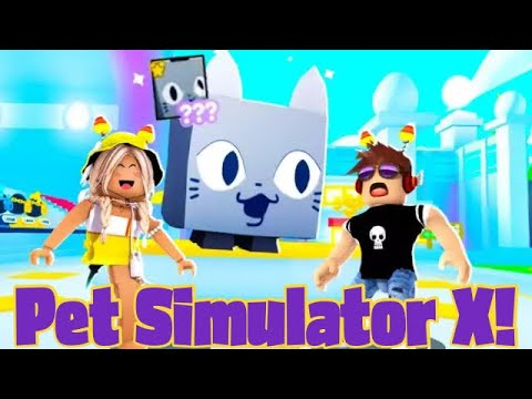 Download We Trade in PET SIMULATOR X for the FIRST Time!! *New DREAM Pet?!*