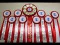 Специализированная выставка НКП УИППЕТ ранга ПК. 03.06.17. Кобели.  Класс промежуточн�