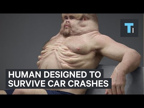 Human designed to survive car crashes