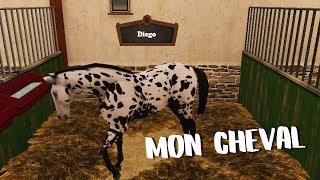 MON CHEVAL - HORSEWORLD