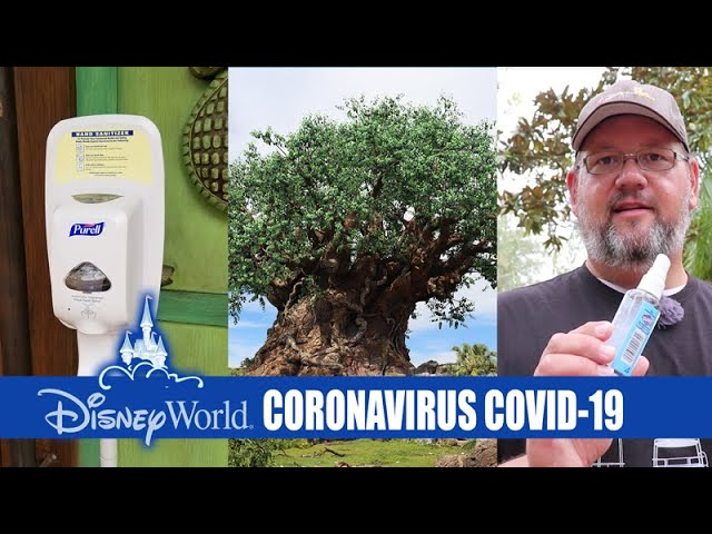 Walt Disney World Resort - What's Going On With The Coronavirus COVID-19