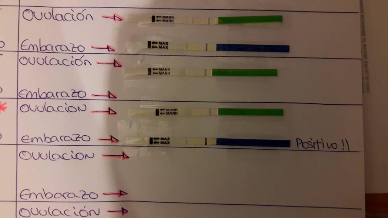 test de ovulacion detecta embarazo