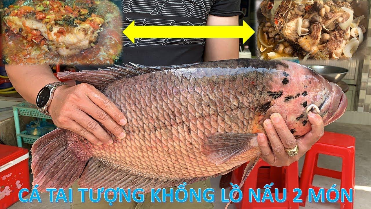 Cá Tai Tượng Khổng Lồ Nấu 2 Món Siêu Ngon Đãi Việt Kiều Mỹ