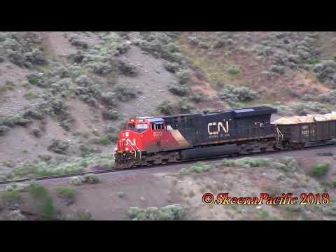 SP Trains #1004