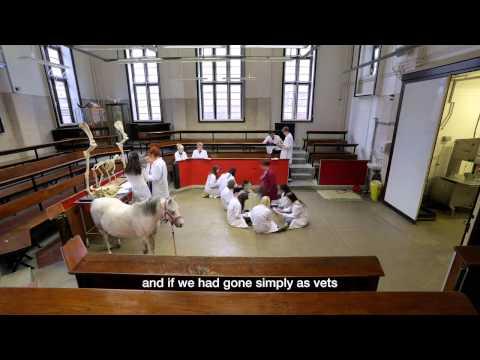 Royal Veterinary College, University Of London