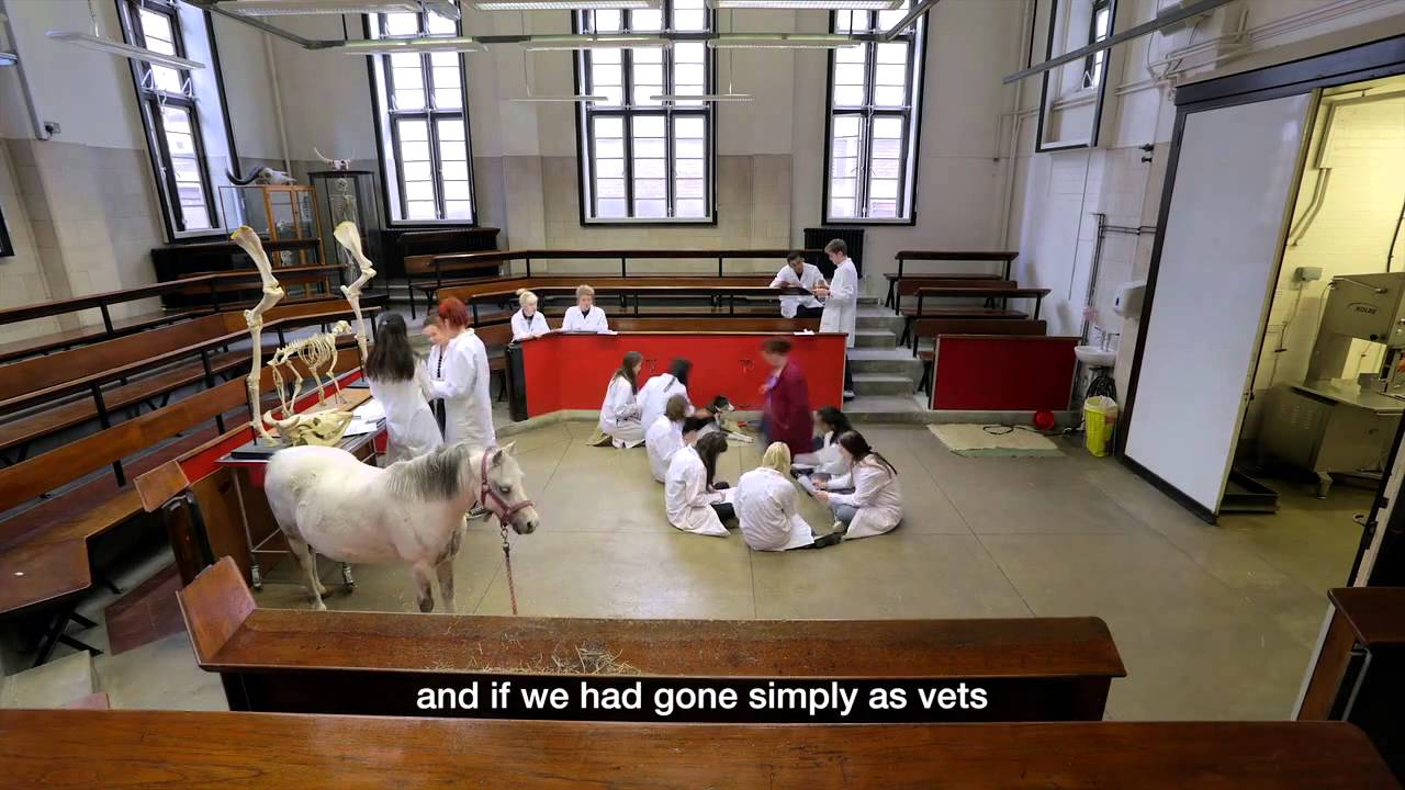 Royal Veterinary College, University of London - YouTube