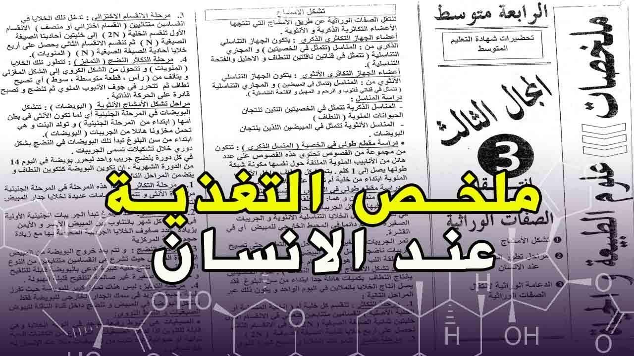 كتاب حقوق الانسان pdf
