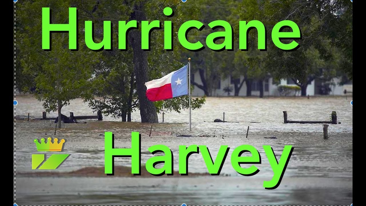 No Reselling On Ebay During Hurricane Harvey 2017 Flooded Every Thrift Shop In Houston Youtube