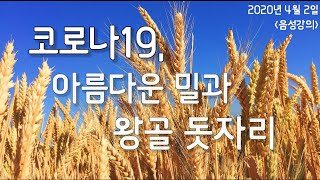 2020년 4월 2일 홍영선 건강강의_코로나19, 아름…