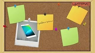 Рекламный ролик iPhone exchange