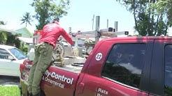 1st Solution Pest Control located in Miami, FL