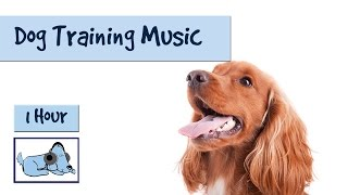 Training your dog can be a long and laborious task - but fear not! ...