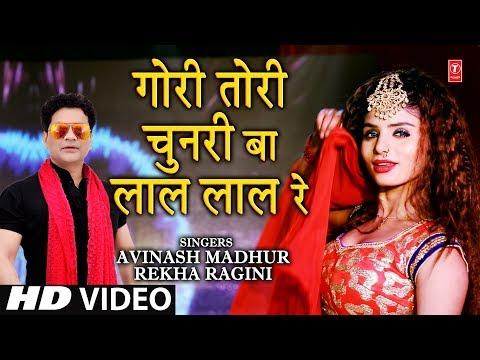 GORI TORI CHUNRI BA LAL LAL RE | Latest Bhojpuri Song 2019 | Feat. AVINASH MADHUR, REKHA RAGINI