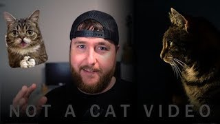 Simple Digital Marketing For Financial Advisors Not A Cat Video