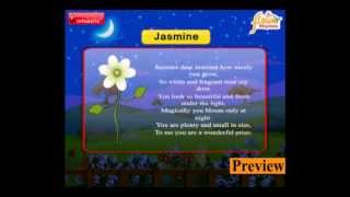 Infobells - Flower Rhymes
