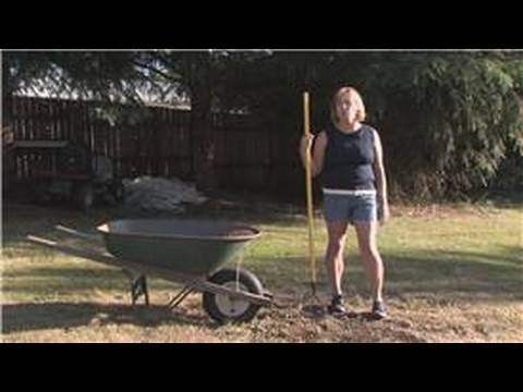 When and How to Fertilize Centipede Grass - Danny Lipford