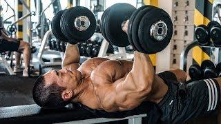[개근질닷컴] 보디빌딩 세계챔피언 김성환 가슴·삼두운동 / Bodybuilding World Champion Kim Seong Hwan  chest·arm workout