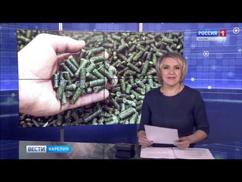 «Вести-Карелия» 28.11.19