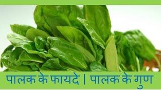 पालक खाने के फायदे   पालक के गुण   Health Benefits of Spinach