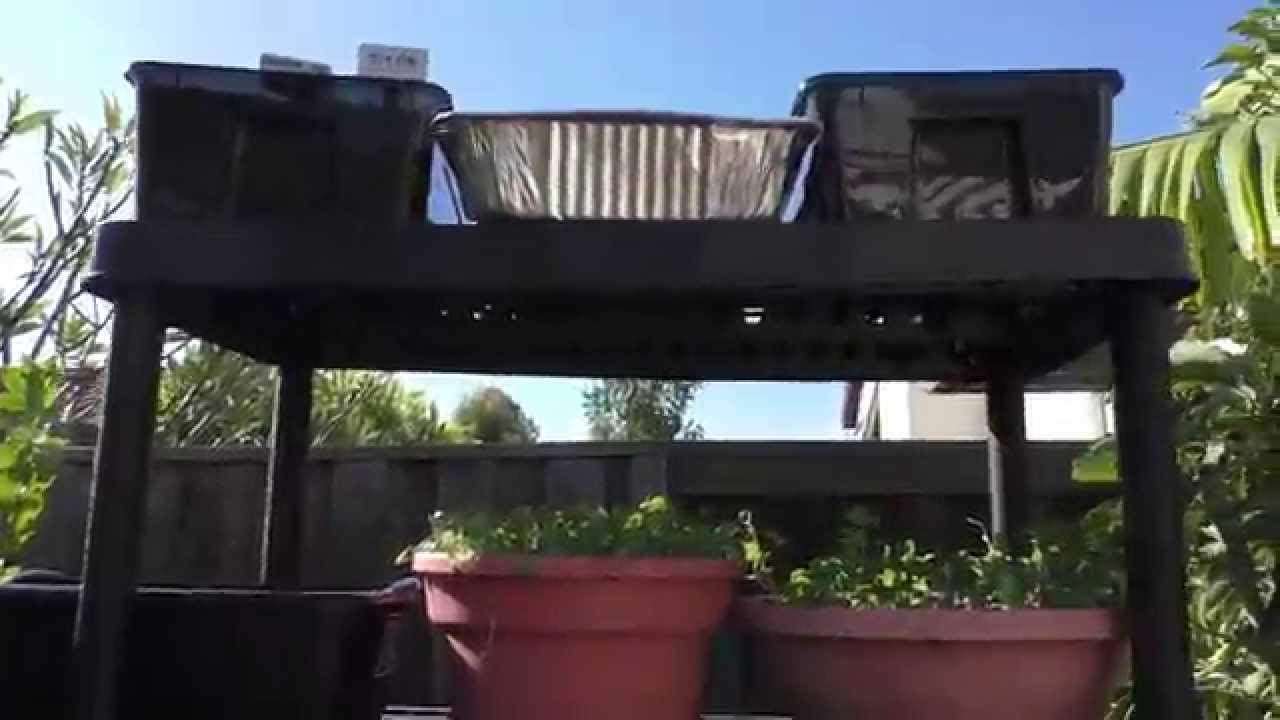 Vertical Gardening Made Easy