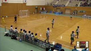 2019年IH ハンドボール 女子 3回戦 華陵(山口)VS 国分中央(鹿児島)