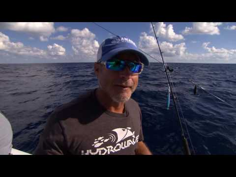 Bass Anglers for Saltwater Conservation Off Shore Fishing Port O Connor