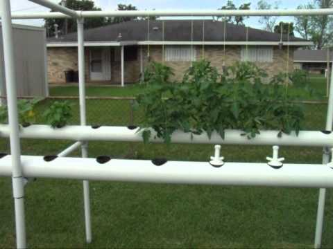 My Pvc Pipe Hydroponic Garden Explained Youtube