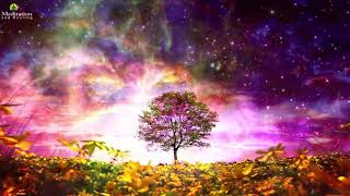 8 Hours Peaceful Sleep Meditation Music: Relaxing Dream Music, Soothe Your Mind, Stress Relief