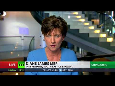 Independent MEP slams Juncker's 'flourishing' EU