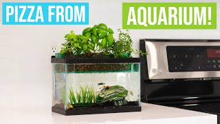 COOKING VEGAN PIZZA WITH AQUAPONICS | Grow & Cook