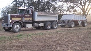 David Hull's 1974 Peterbilt Dump Truck with Peerless Trailer