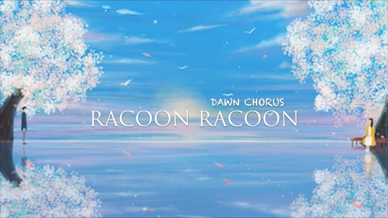 Racoon Racoon - Dawn Chorus (Lyrics)
