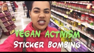 Video STICKER BOMBING GROCERY STORES- thanksgiving edition download MP3, 3GP, MP4, WEBM, AVI, FLV Agustus 2018