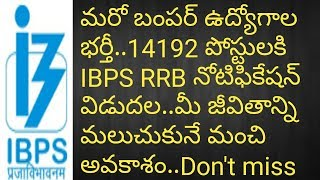 IBPS RRB Notification for 14192 Posts   Officer Assistant,officer scale 1  IN RRB's