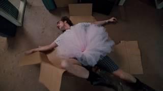 Эйс прячется в коробку