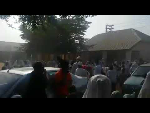 Little primary school children pushed to streets by teachers in Kaduna