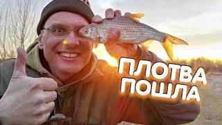Первая рыбалка на фидер Дядя Фёдор и Весенний ход плотвы на Десне Идёт или нет