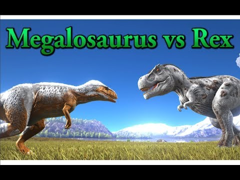 Megalosaurus Vs Rex Ark Survival Evolved Cantex Youtube Ark id for kibble (megalosaurus egg) is kibble_megalosaurusegg. megalosaurus vs rex ark survival evolved cantex